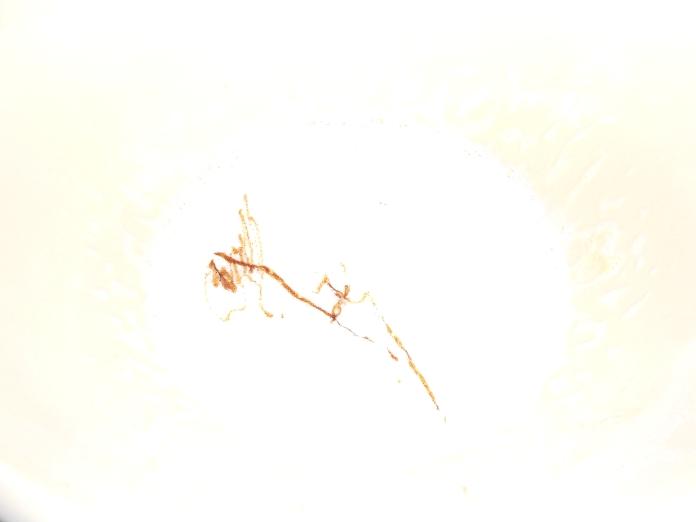 DSCN0699